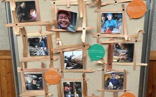 Foxfire in Japan: The Kikigaki Koshien Project